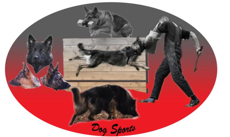 Dogsports Kreative Fotobearbeitung
